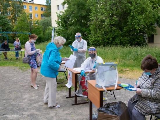 Петрозаводчане голосуют по поправкам к Конституции во дворе. Фото, видео