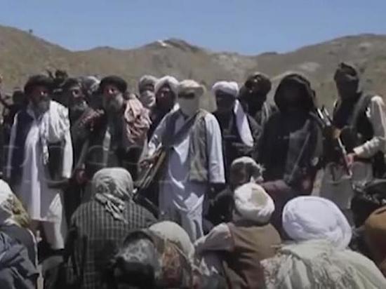 СМИ: АНБ не согласно с ЦРУ о сговоре России с талибами