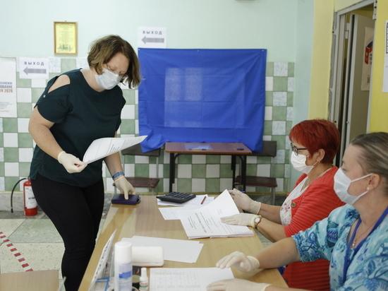 Нижегородцы принимают активное участие в голосовании