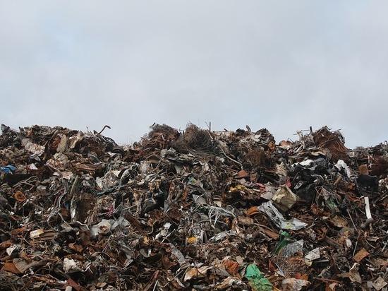 В Оренбургской области изменится цена на вывоз мусора