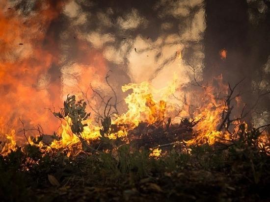 В Оренбуржье продолжает сохраняться высокий класс пожароопасности