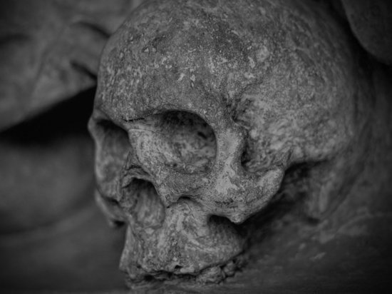 Возле храма в Ленобласти нашли жуткий скелет со связанными конечностями