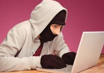 COVID-мошенники грабят петербуржцев с помощью интернета