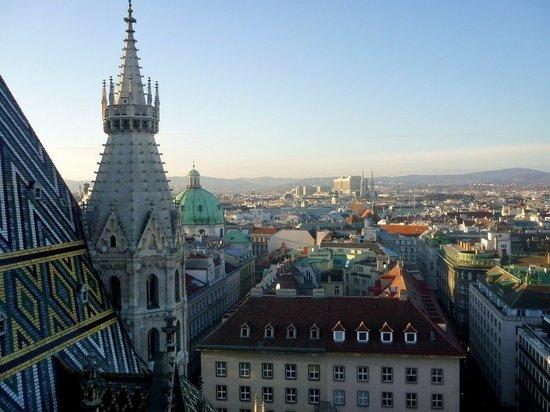В Австрии заявили о тревожной ситуации с ростом числа заболевших коронавирусом
