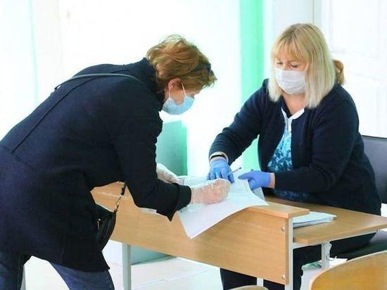 Как общественные наблюдатели следят за голосованием по поправкам в Челябинской области