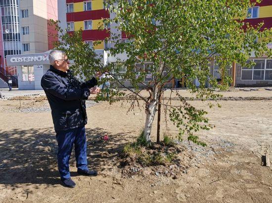 В Салехарде стартовала санитарная обрезка деревьев