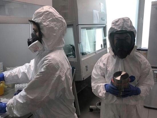 В Томской области от коронавируса умерло сразу трое человек