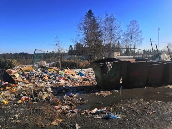 В Карелии организуют концессию по строительству мусороперерабатывающего завода