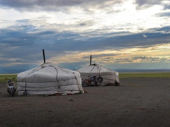 Оценена угроза вспышки чумы в Монголии для России