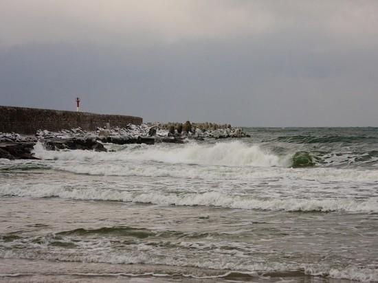 Песков прокомментировал повышение радиации на Балтике