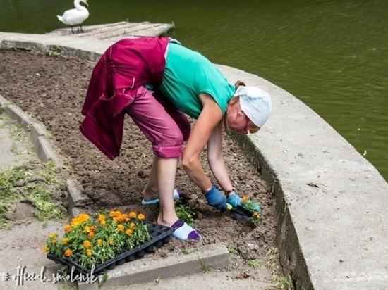 Лопатинский сад в Смоленске украсили огромным количеством цветов