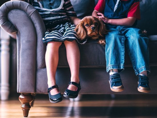 Роспотребнадзор запретил массовые мероприятия для детей до 2021 года