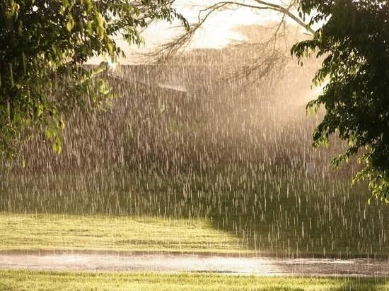 Иваново ждут дождливые выходные