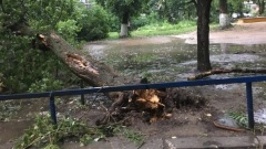 Ураган разгромил улицы Малоярославца