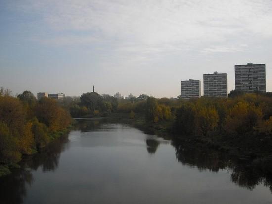 В московской реке Сходня обнаружили нефтяное пятно