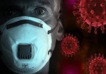 Пандемия, которой не было: почему старейший вирусолог России в нее не верит