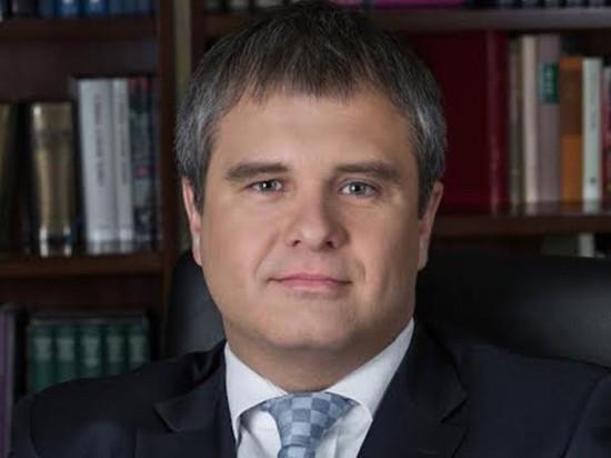 Бывший сотрудник ФСБ, бизнесмен Роман Путин, являющийся двоюродным племянником президента Владимира Путина, готовится возглавить собственную партию