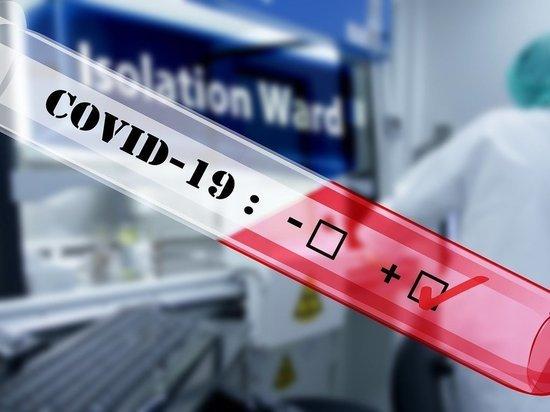 За время эпидемии от коронавируса избавились 1187 псковичей