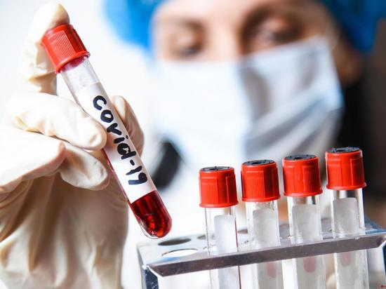 В донском регионе еще 91 человек заразился COVID-19