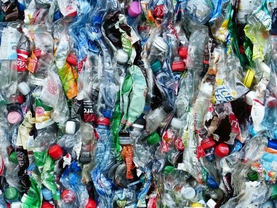 Путин поручил проработать подключение НКО к раздельному сбору отходов
