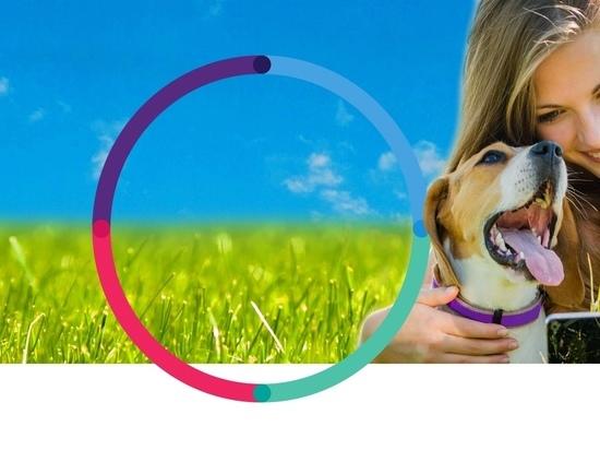 Отметим Международный день собак