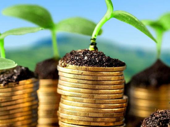 Трутнев: нужно помогать инвесторам, чтобы каждый проект состоялся