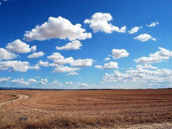 В Челябинской области пастуха убило молнией