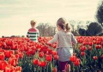 Чиновник семьям с 3-7-летними детьми: При одобренном заявлении деньги будут