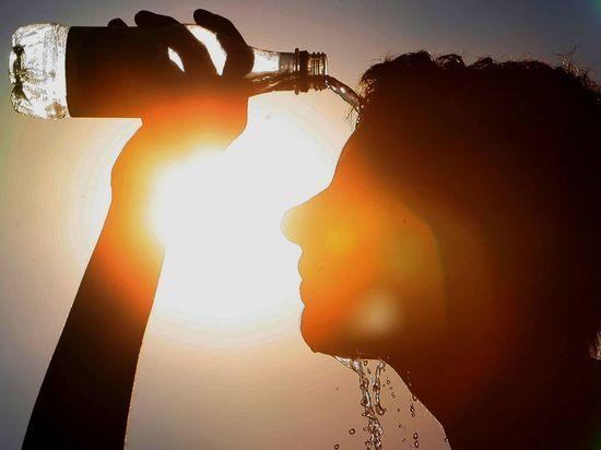 МЧС предупреждает дончан о сохранении аномальной жары