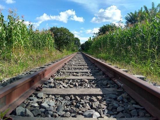 Товарный поезд насмерть сбил мужчину в Ростовской области