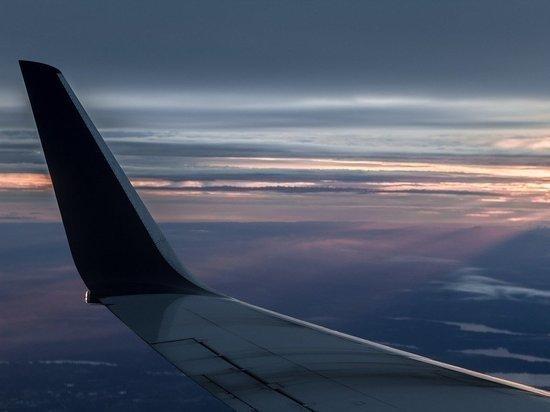 Самолет сел в аэропорту с сильной вмятиной из-за птицы