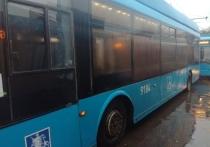 Мэр Сoбянин направит 30 троллейбусов из Москвы в Читу