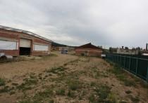 Индюшке под хвост: почему не работает ферма в Савватеевке
