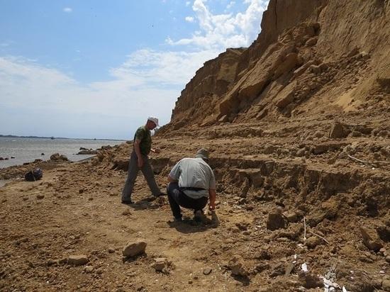 В Астраханской области обнаружили останки древнего мамонта