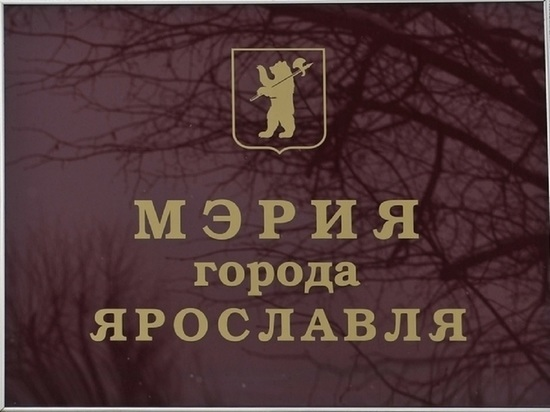 В Ярославле партии-спойлеру выделили здание в центре города