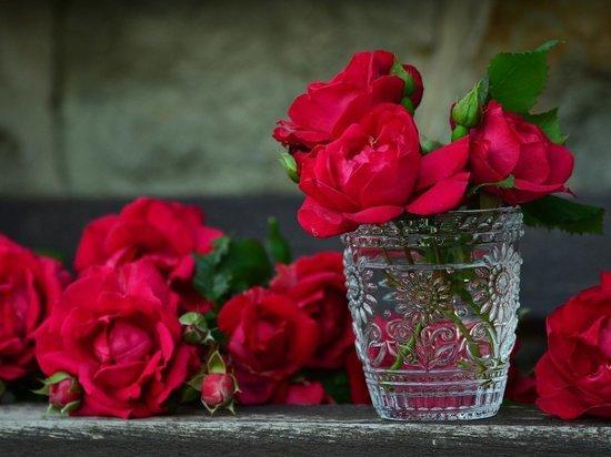 Россиянам будет проще выбрать розы для букета: утвержден новый ГОСТ