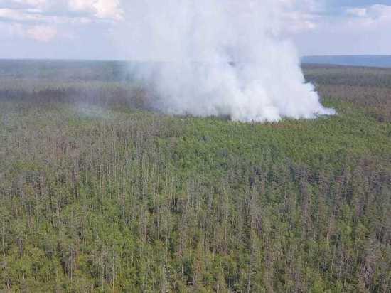МЧС Якутии: за сутки площадь природных пожаров уменьшилась