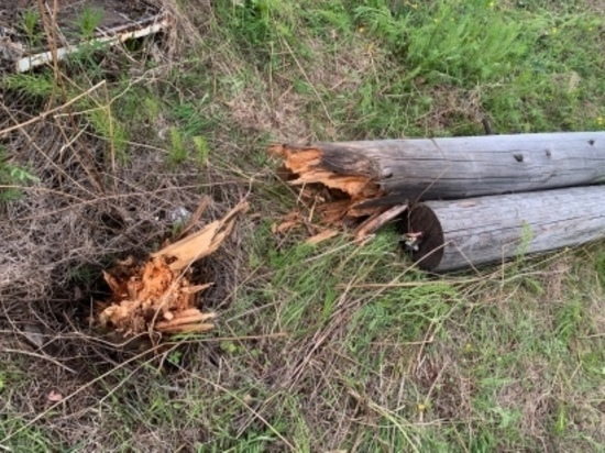 На севере края монтер упал на землю вместе со столбом
