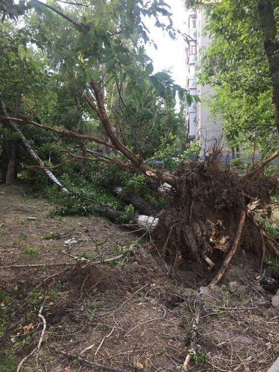 Буря в Ивановской области оставила без света более 11 тысяч человек