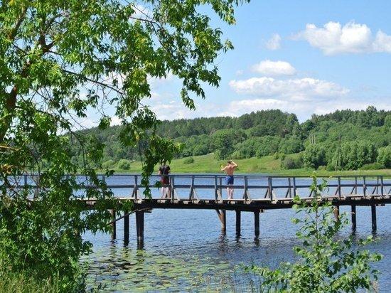Три года для жителей шести деревень Вичугского района единственной связью с «большой землей» остается пешеходный мост