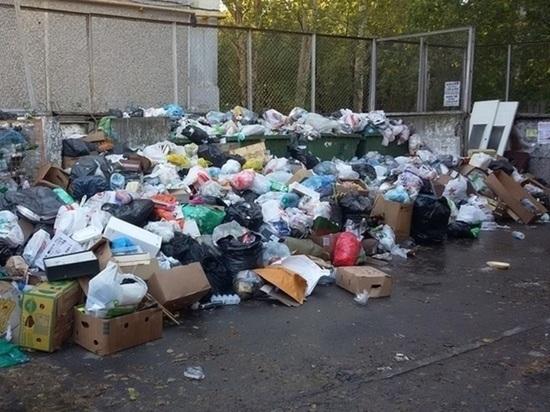 В Свердловской области планируется создать 17 мусоросортировочных комплексов