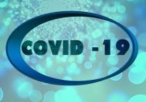 Германия: За истекшие сутки число заболевших Covid-19 увеличилось на 442 человека