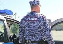 Псковичку, укравшую продуктов на тысячу рублей, поймали росгвардейцы