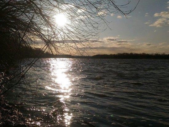 В Пронском районе на реке Галина утонул пьяный мужчина