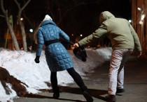 Житель Тверской области напугал на улице девушку ради пары сотен