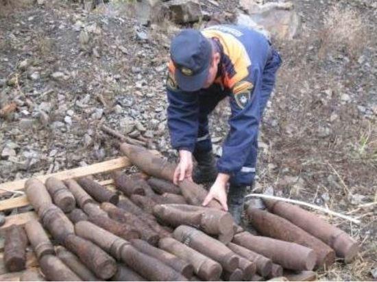 С начала года в Ростовской области найдено и обезврежено более тысячи боеприпасов времен ВОВ