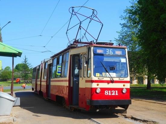 Идущие по Маршала Говорова трамваи и троллейбусы изменят свои маршруты