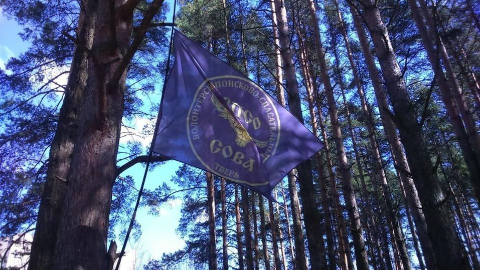 Специалисты рассказали о навыках выживания в тверских лесах