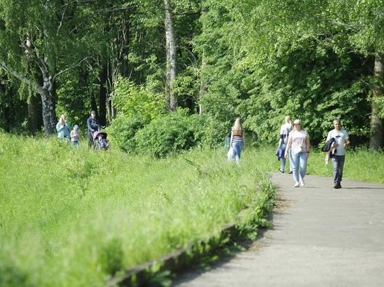 Нижегородцы обсудят онлайн благоустройство парка