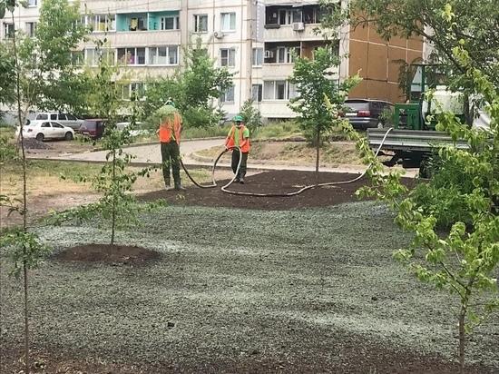В Иркутске газоны обустраивают гидропосевом
